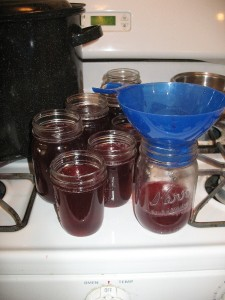 IMG 49502 225x300 Super Easy Currant Jelly