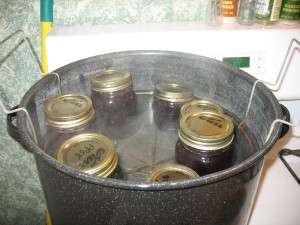 IMG 49512 300x225 Super Easy Currant Jelly