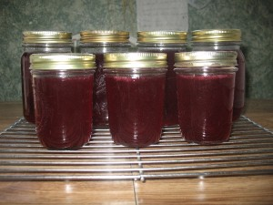 IMG 49651 300x225 Super Easy Currant Jelly